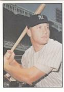 1978 TCMA # Mickey Mantle